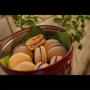 macarons_b
